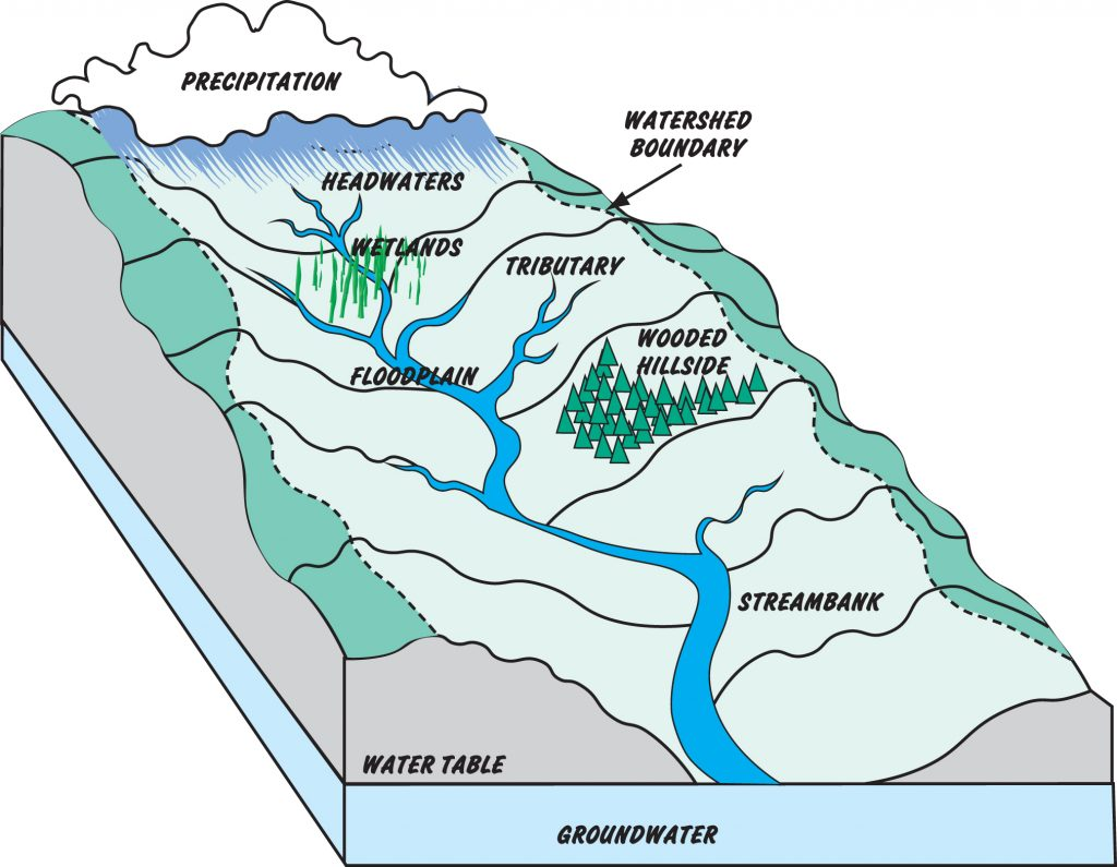 watershed-diagram2